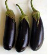 Eggplant Marion