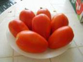Tomato Roma Dartagnan