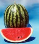 Watermelon Seeded Ercan